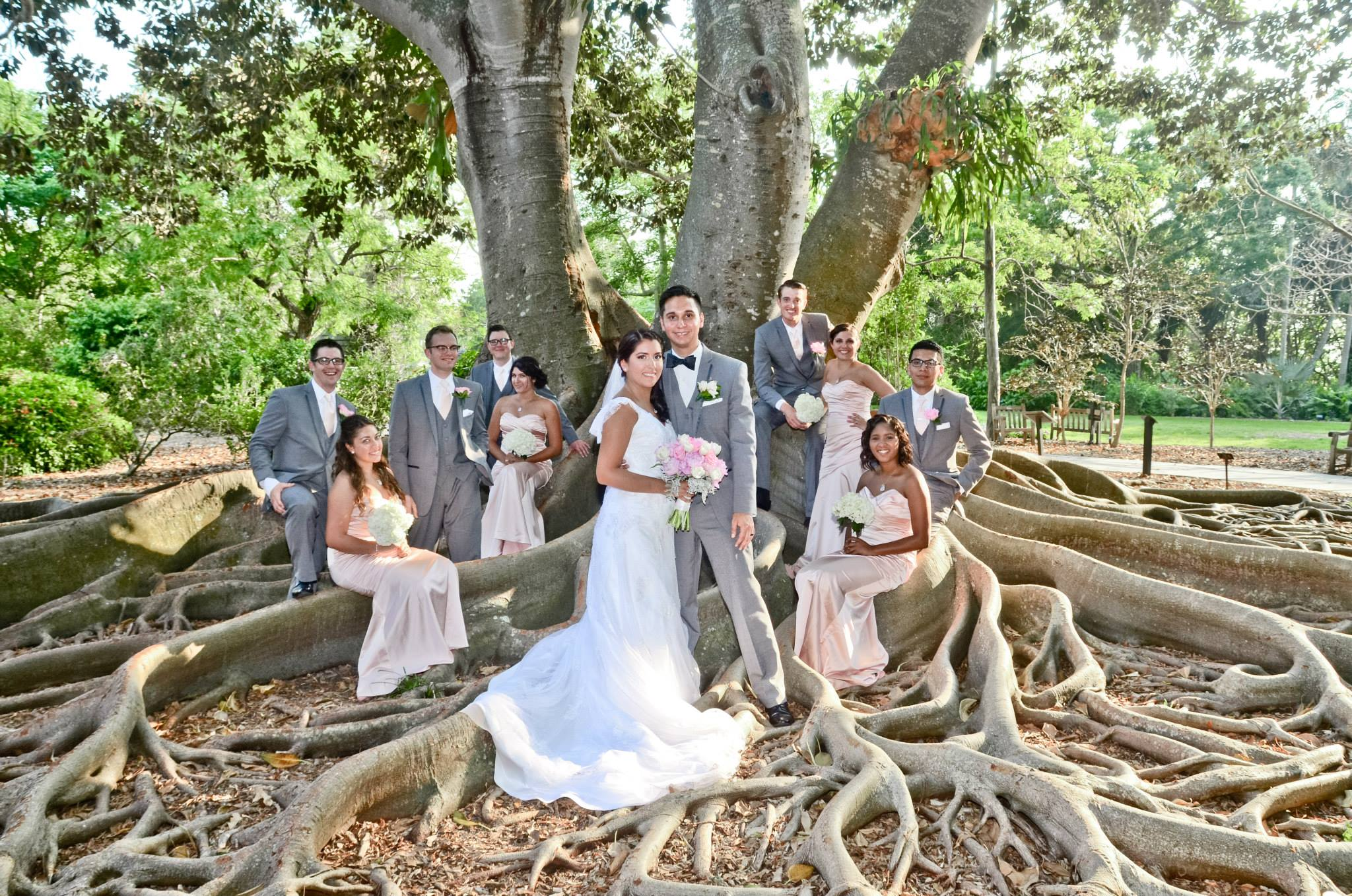 Randall productions blog tampa wedding blog randall - Marie selby botanical gardens coupon ...